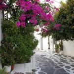 batran grec stand la umbra in Mykonos