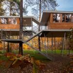 Biroul din copac. Un proiect special – vezi imagini