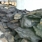 carbune brun centrala lemne