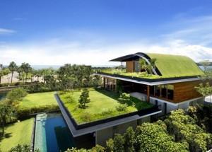 casa cu gradini