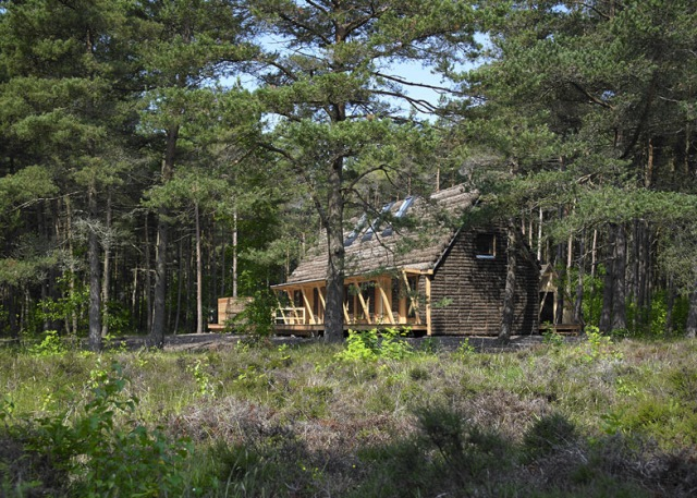 casa ecologica iarba mare exterior 2