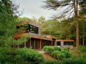 casa inconjurata de pini