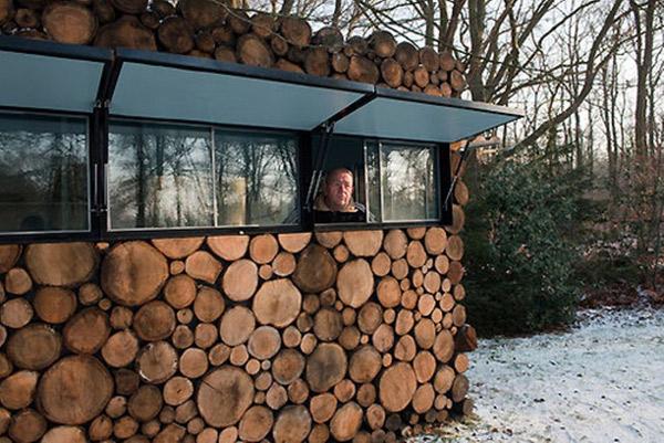 casa lemne copac
