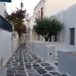case din Mykonos cu maslini si bougainvillea in curte
