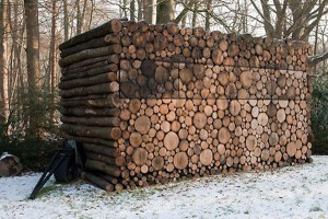 casuta din lemne