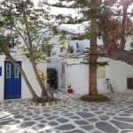 cativa copaci intr-o piateta din capitala insulei Mykonos