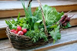 cos legume