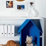 culcus caine si pisica amenajate intr-o etajera din living