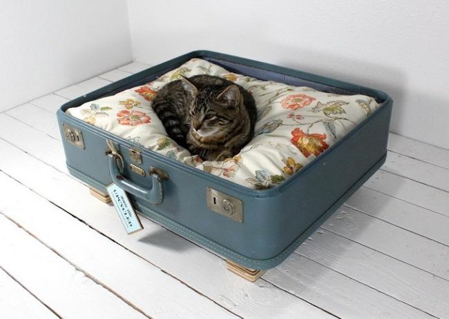 culcus vintage pentru pisici din jumatate de geamantan vechi