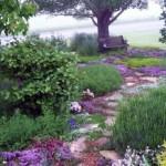 dale de piatra alee gradina rustica ce imita peisaj salbatic natural