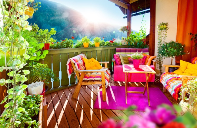 decor balcon flori si arbusti decorativi