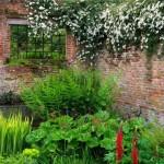 decor rustic gradina din plante si flori salbatice