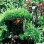 decor salbatic gradina helesteu cu pietre de rau ferigi de padure iarba de camp si artar japonez