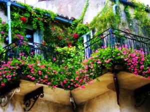 decorare flori balcon