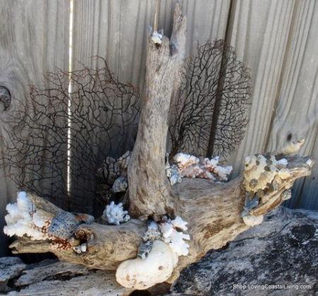 decoratiune eco lemn corali scoici