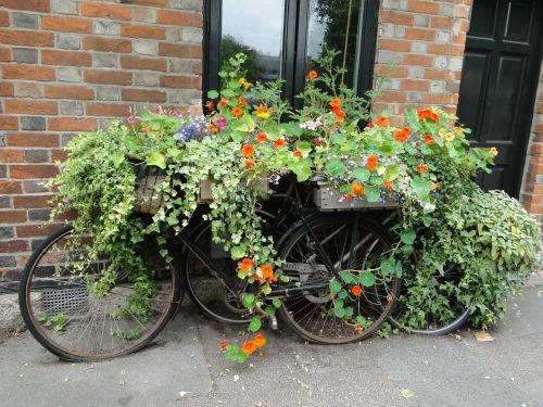 decoratiune gradina biciclete vechi