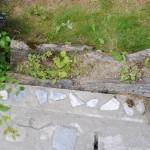decoratiune gradina buturuga 2