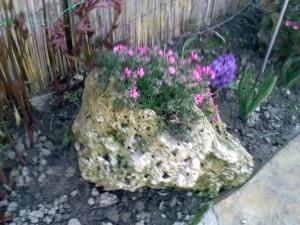 decoratiuni exterioare cu piatra si flori