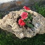 decoratiuni piatra tuf calcaros