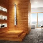 dus modern placat cu lemn masiv tratat antiumezeala