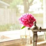 fereastra bucatarie decorata