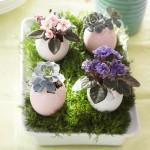 flori mici plantate in coaja de ou asezate intr-o tavita cu iarba aranjament festiv Paste