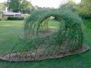 foisor tunel de gradina din crengute de salcie plantate in pamant