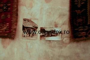 fotografii cu case taranesti