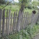gard scandura vechi