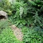 gardina rustic imitatie peisaj natural de padure ierburi plante salbatice si piatra naturala