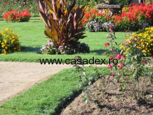 Sfaturi pentru amenajarea gradinii casei tale
