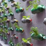 gradina de plante aromate suspendata din peturi de plastic reciclate
