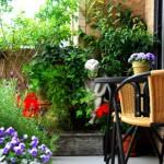 gradina flori balcon mic