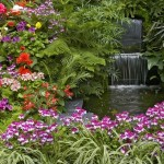 Ce flori mai putem planta in gradina in luna mai