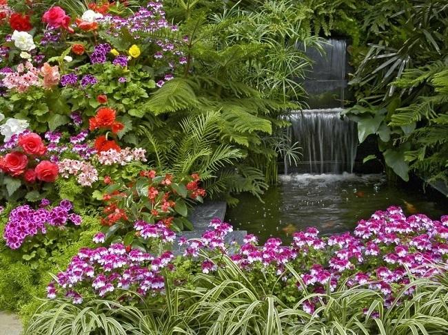 gradina frumoasa cu o multime de flori de vara