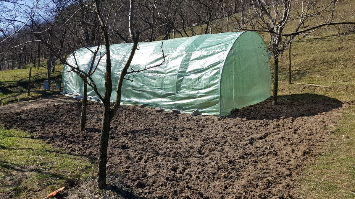 gradina pentru legume langa solar