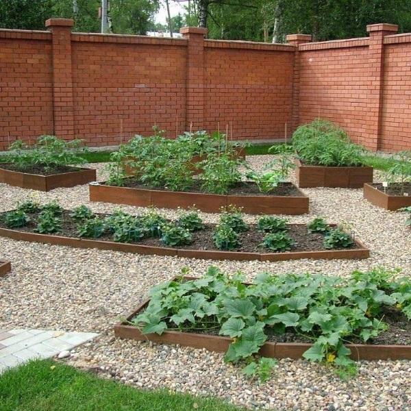 idee cultivare legume in straturi inaltate