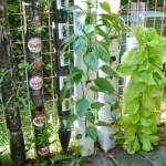 idee gradina suspendata din peturi plastic reciclate