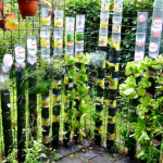 idee gradina verticala din sticle plastic suspendate