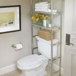 idee raft deasupra vasului wc baie mica