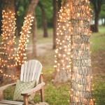 instalatii brad infasurate pe tulpinile copacilor iluminat decorativ gradina