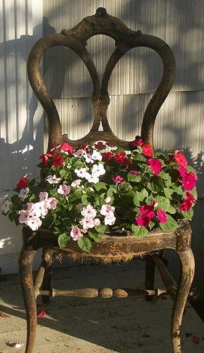 jardiniera 1