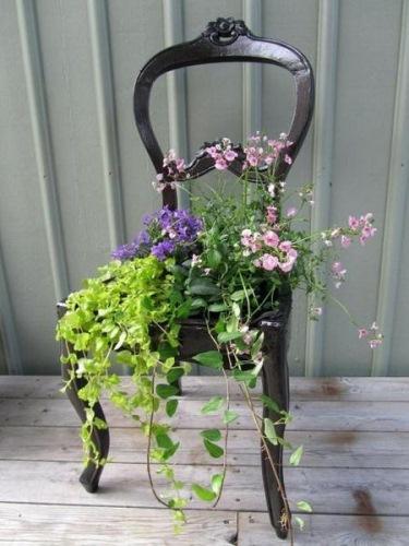 jardiniera 4