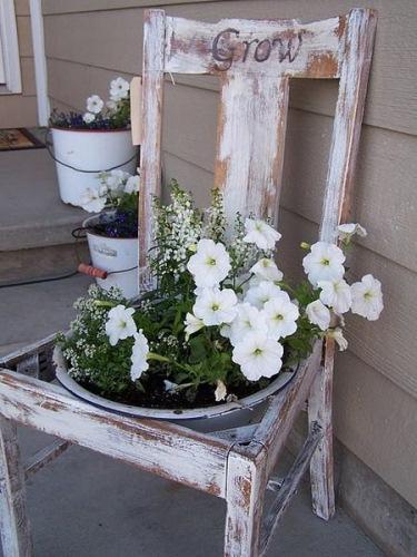 jardiniera 5