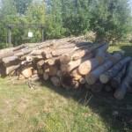 lemne de foc fag stejar