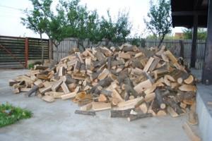 lemne foc 2013-2014