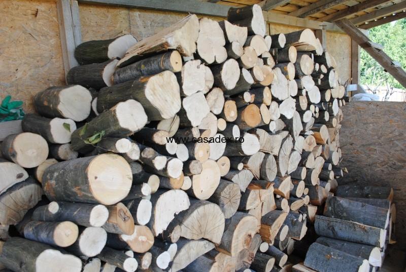 lemne foc fag si carpen