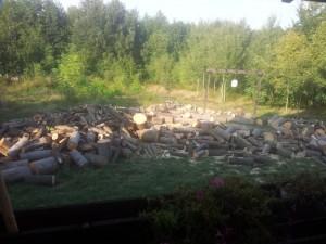 lemne taiate de foc
