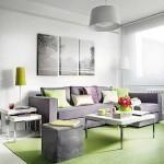 living apartament modern 40 mp decorat in verde si gri
