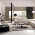 living modern minimalist amenajat in tonuri de gri negru si alb
